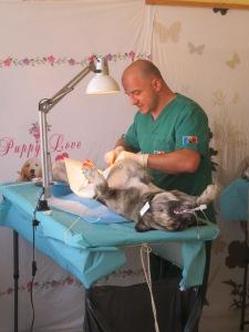 best doc A ocncentrating kindly